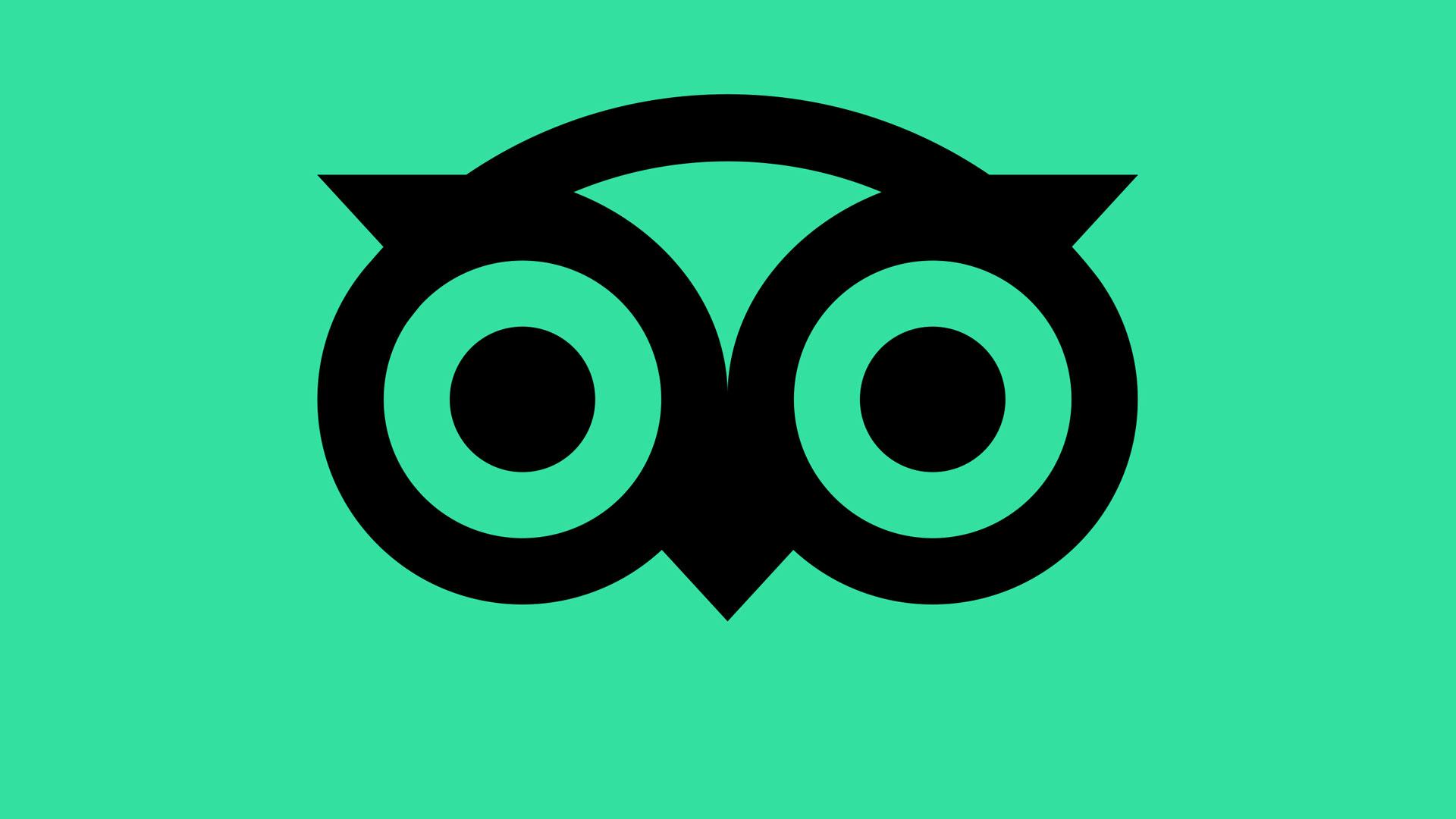 Tripadvisor reveals new logo ahead of year-long identity refresh