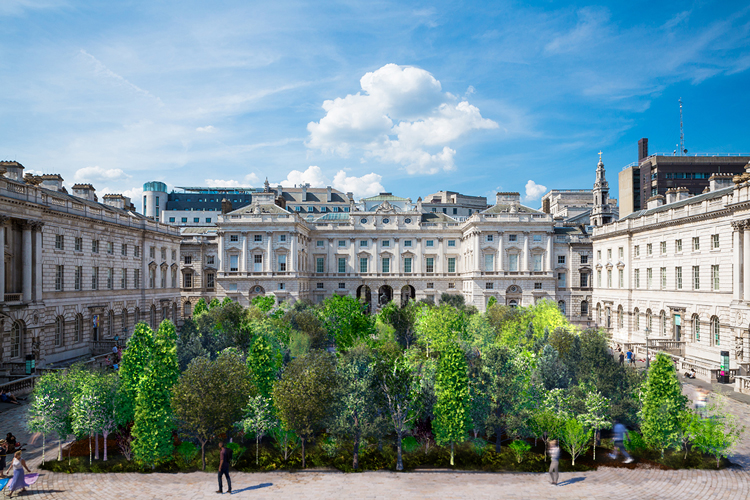 London Design Biennale: Es Devlin to install 400-tree forest at Somerset House | Design Week