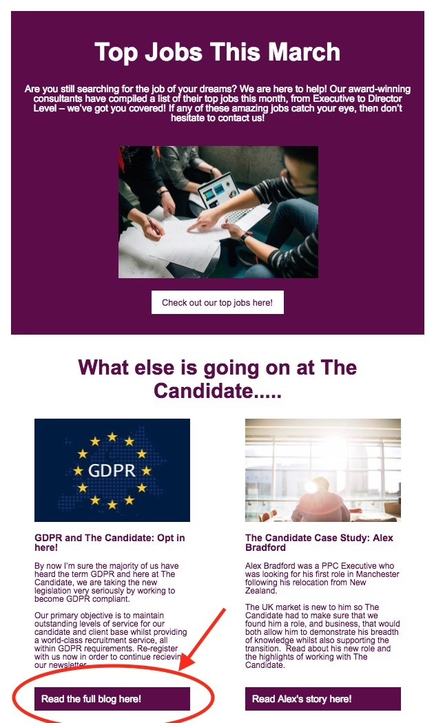 The candidate newsletter with gdpr optin
