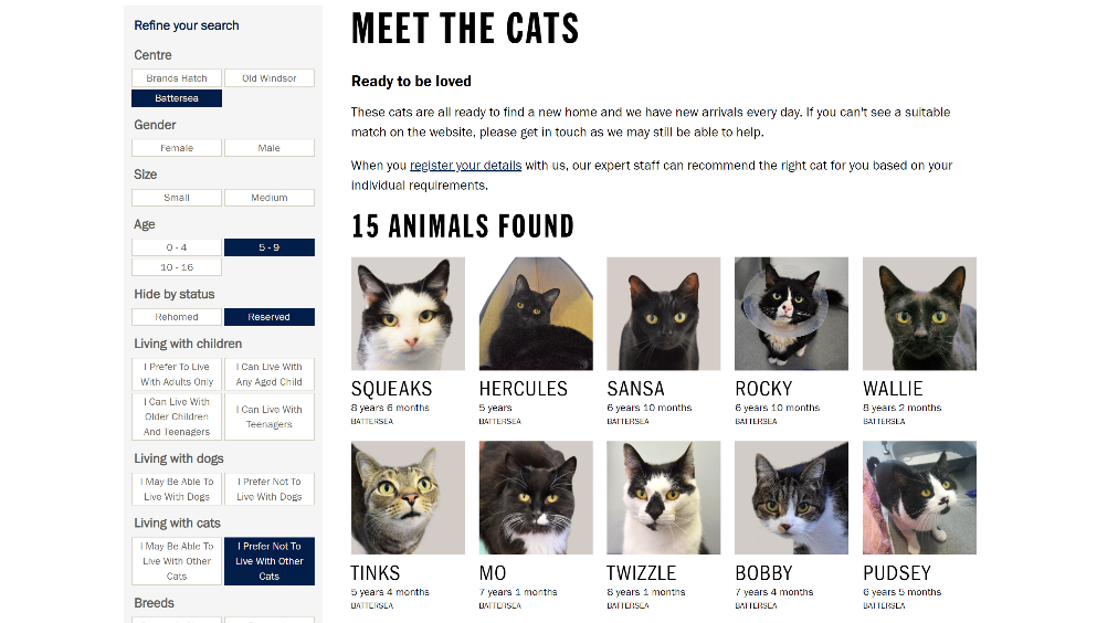17 Battersea meet the cats
