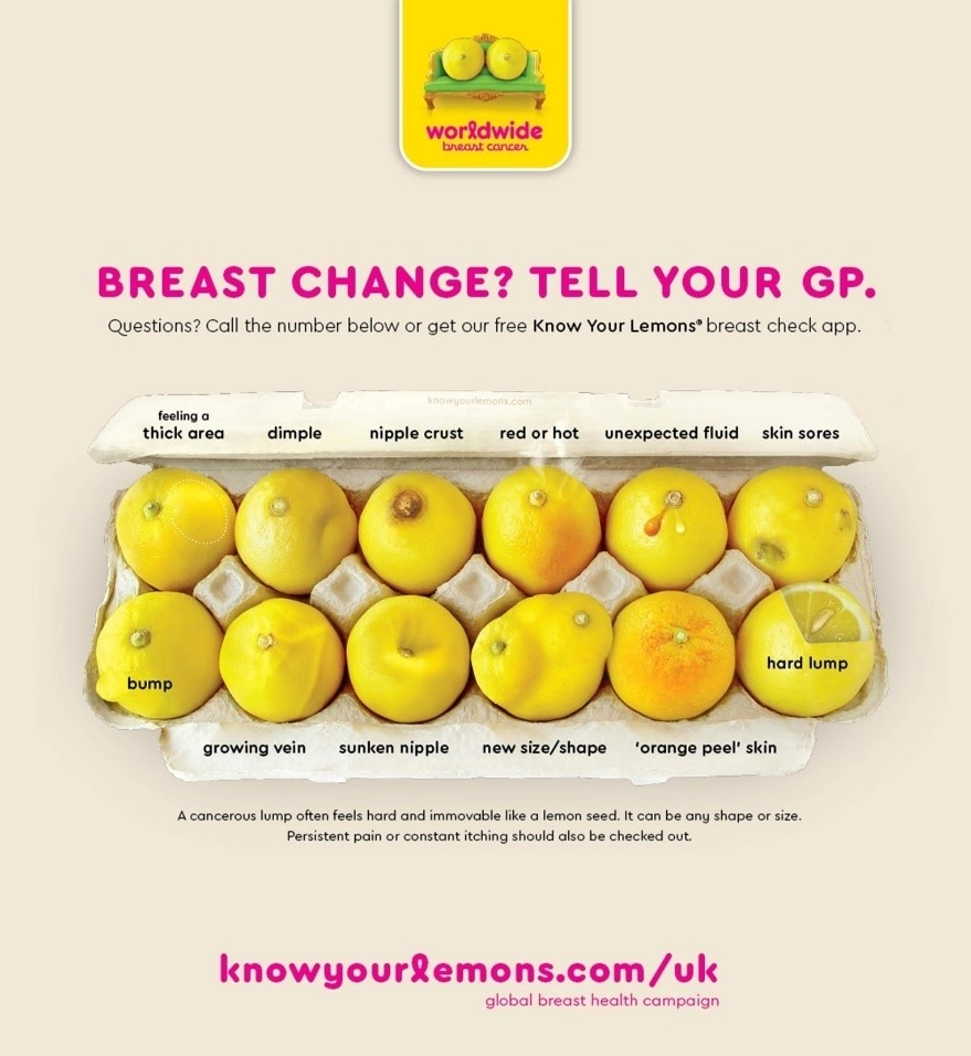 know your lemons infographic