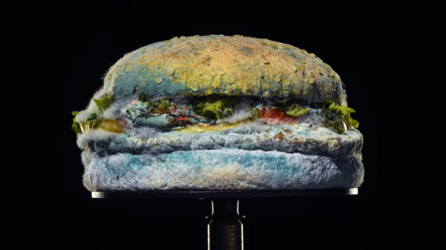 Burger Kind Mouldy Whopper