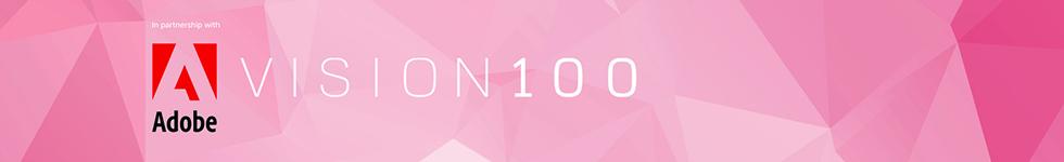 Vision 100 breaker