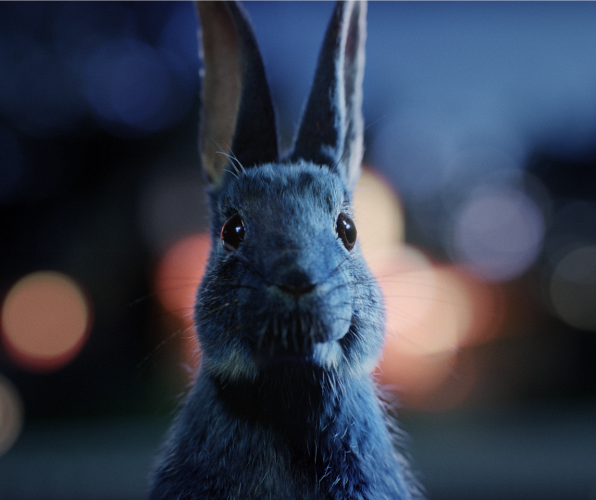 O2 Follow the Rabbit marketing campaign