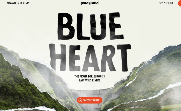 Patagonia Save the Blue Heart
