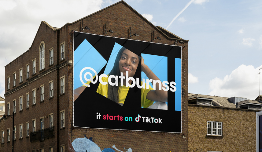 TikTok campaign