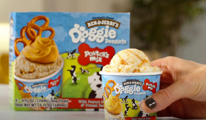 Ben & Jerry's dog dessert