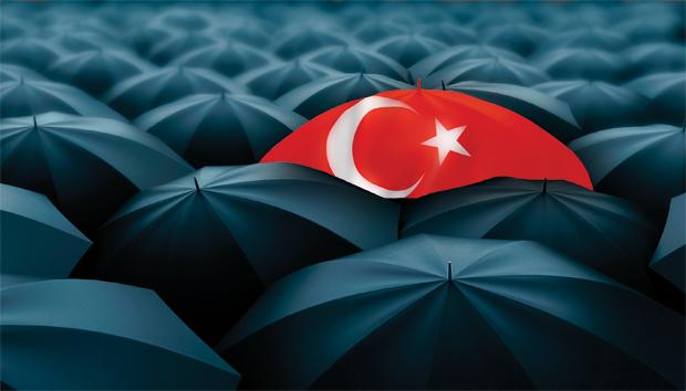 Diversification umbrella