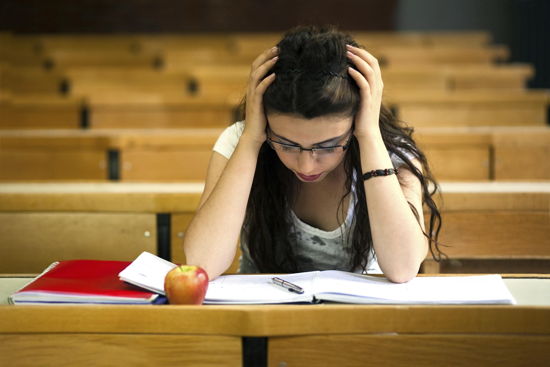education study university