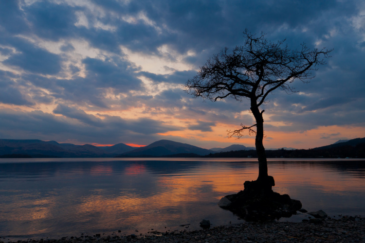 Mindfulness, wellbeing
